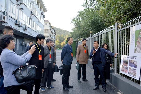 泰山街道人大工委组织人大代表开展视察活动